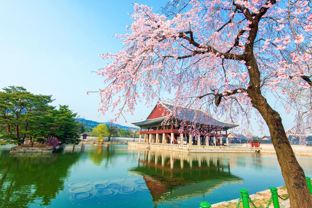 Güney Kore--6