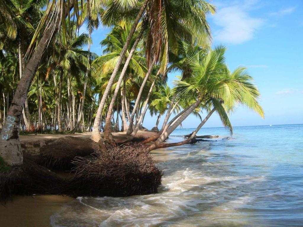 Dominik Cumhuriyeti (2)